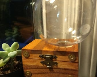 Small Terrarium Steampunk Planter Gardening Box
