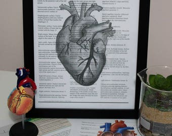 Print of Anatomical Heart on Textbook Page