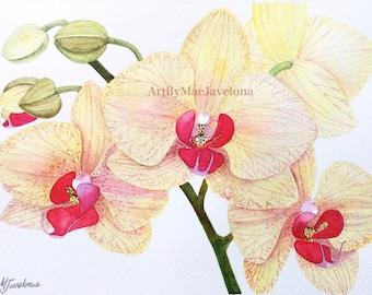 "Yellow Phalaenopsis Orchids, Print of my Original Watercolor Illustration, 12""X9"""