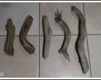 Beautiful lot of 5 Driftwood branches (N ° 6 2017)