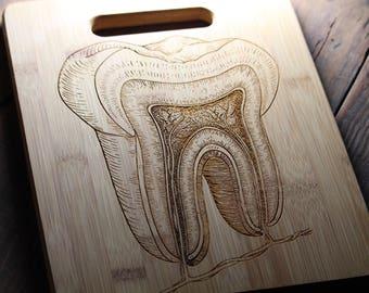Personalized Cutting Board, Tooth Anatomy, Dentist Gift, Dentist Office, Dentistry, Dentist Graduation, Dental Hygienist, Dental Assistant