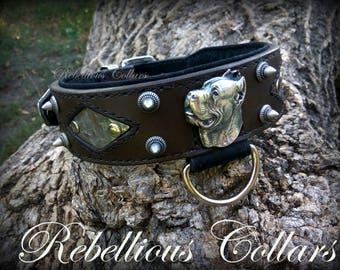 Cane corso leather dog collar