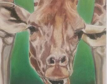 Animal Spirit Guidance Drawing & Reading