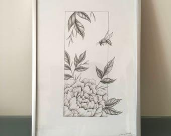 Wild Rose Original Ink Drawing