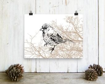 Bird Poster, Sparrow Bird Print, Bird Wall Decor, Paper Wall Art, Farmhouse Wall Decor, Print On Paper, Wall Hanging, Bedroom Decor