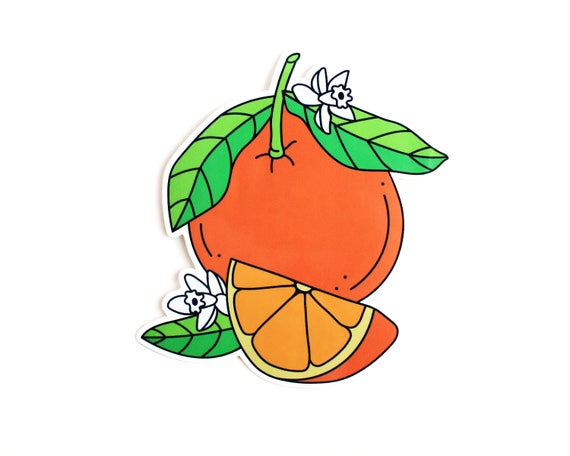 Florida Oranges Vinyl Sticker