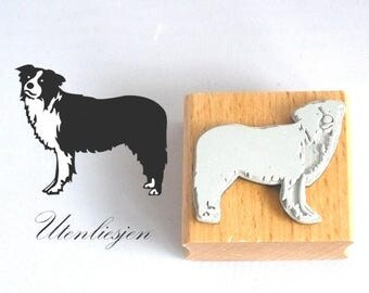 Stamp border collie, australian shepherd, 4 cm