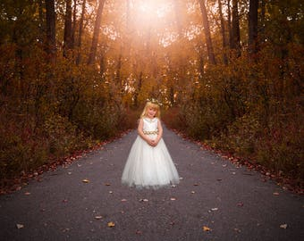 Fall autumn forest path digital background backdrop