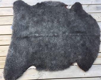 Exclusive sheepskin rug /pelt from rare Swedish Gute breed