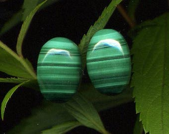 Malachite x 2 (420), 16 x 11 x 6 mm oval cabochons