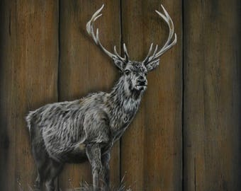 Stag, stag art, original stag painting