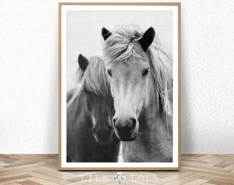 Horse Print, Large Printable Wall Art, Black and White Photography, Wall Decor, Digital Download, Horse Decor, Large Horse Poster Print