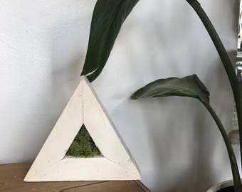 Mossy Love Shelf Triangle
