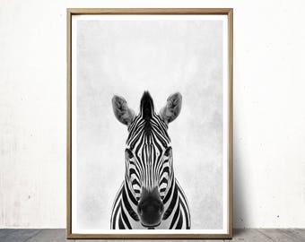 Zebra Print Zebra Poster Wall Art Print Animal Print Zebra Art