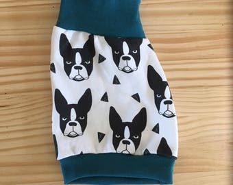 Boston Terriers with teal cuffs, kids shorties, boy shorts, girl shorts, baby shorts, organic clothes, dog lover, dog clothes, baby' dog