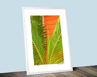 Island Color  Photographic Wall Art Poster Print For Your Beach Theme Home (Frame not included)