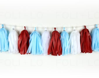 FIREWORKS DAY Tassel Garland | Festive Garland | Baby Shower Garland | Gender Reveal Garland | Nursery Garland | Birthday Garland | 15