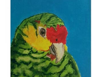 Amazon Parrot Stationary - Note Cards - Print - 5x7