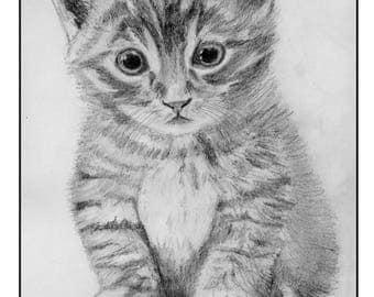 Transfer cute tabby kitten for fabrics light 11.8 x 8.3 cm fusible