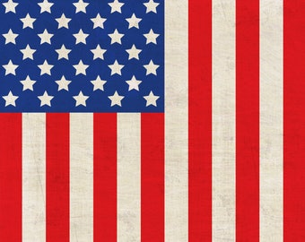 United States Flag Printed Backdrop (HD4-ER-003)