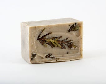 """Forest Boreale"" SOAP with chaga, black spruce, pine, cedar wood"