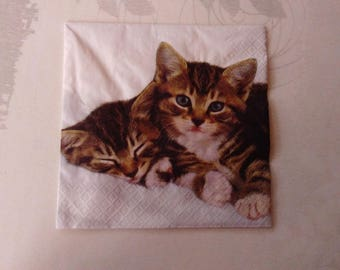 set of 2 cat paper napkins and small, white background