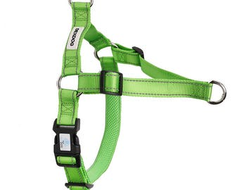 DEXDOG Easy Walking EZTrainer Dog Harness Turquoise Medium - Training No Pull Dog Harness Front Clip No Pulling Stop Pulling