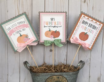Pumpkin Girl Birthday Centerpiece Sticks -  Pumpkin & Roses Centerpiece - Pumpkin 1st Birthday - Pumpkin Party - Little Pumpkin - Assembled