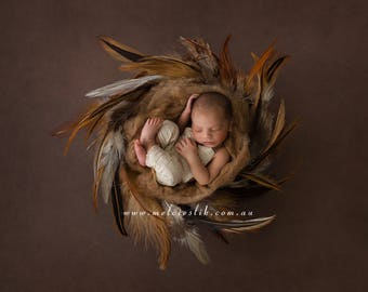 Newborn Photography Digital Backdrop Background Boys