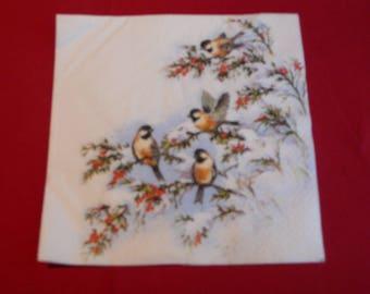 "animal theme ""Paradise birds"" paper towel"