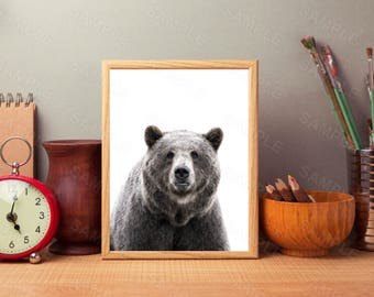 Black Bear, Animal Print, Wall Art Decor, Printable Wall Print, Instant Download, Digital Art Print