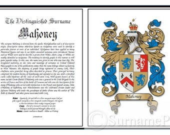 2 Page Name Origin - Coat of Arms, Family Crest, Last Name Meaning, Geneology, Surname, Origin of Name, Last Name Print, Family Name