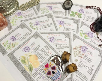 10 Herbarium Bundle #2  - INSTANT DOWNLOAD Book of Shadows Pages : Chamomile, Apple, Yarrow, Thyme, and more