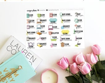 SALE Spring Cleaning Planner Stickers | 30 Day Cleaning Challenge Stickers | 30 Stickers for ANY Planner