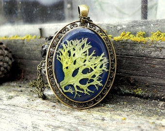 Real lichen Pendant, Forest Resin Necklace, Terrarium pendant, Moss, Nature Necklace For Women, Nature Lover Gift, Nature Inspired Jewelry