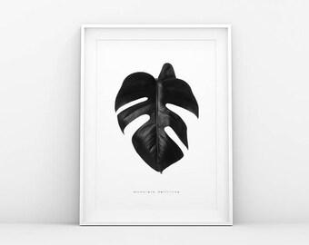 Monstera Leaf Print - Black White - Botanical Poster - Monstera Plant - Monstera Leaf Art - Printable Art - Scandinavian & Nordic Wall Art