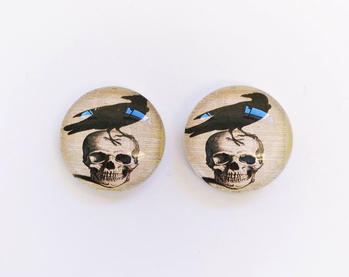 The 'Scare Crow' Glass Earring Studs