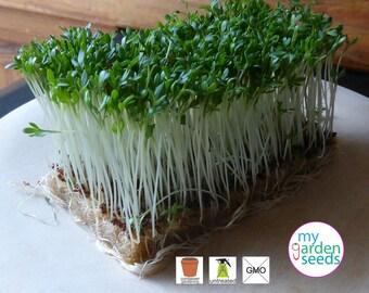 Garden Cress seeds 1000, Lepidium sativum, Pepperwort, Pepper grass, Heirloom seeds, Herb seeds, Untreated seds, Fresh seeds, Organic seeds