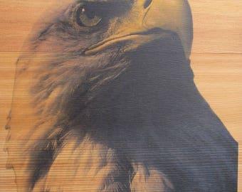 Eagle Cedar Wood Print