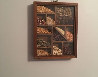 Vintage seed shadow box