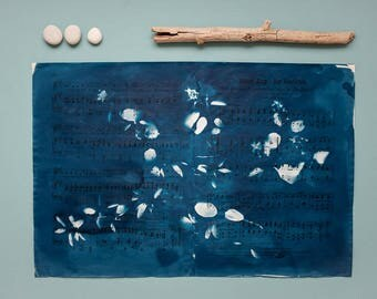 "Original cyanotype ""Serviceberry"" on old, double-sided sheets of music"