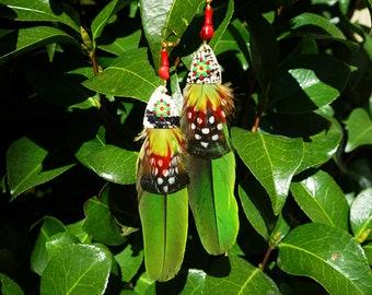 Tropical macaw earrings