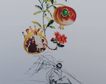 El Salvador DALI - apples-wild Printographie 800ex