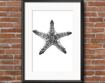 Wall decor. Wall art. Starfish. Sea animals. Ilustration. Graphic. Handmade.
