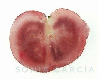Tomato lithograph