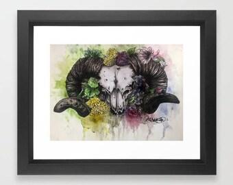 Ram watercolour
