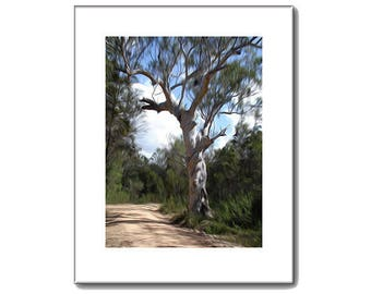 Country Road print - gnarled tree - Landscape Prints - 11 x 14