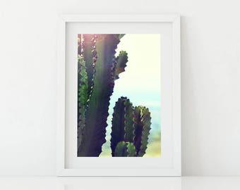 Wall Art, Cactus, Wall Art Printable, Canvas Art, nature, Room Decor,
