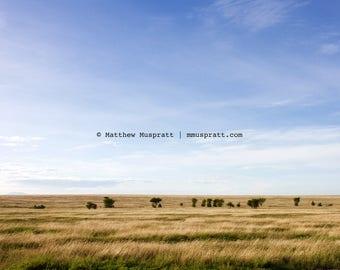 Serengeti, Tanzania, East Africa • Grassland plains • Landscape photograph printed on canvas