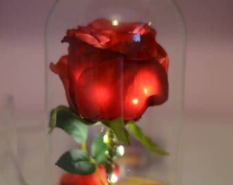 Beauty and the beast inspired rose.